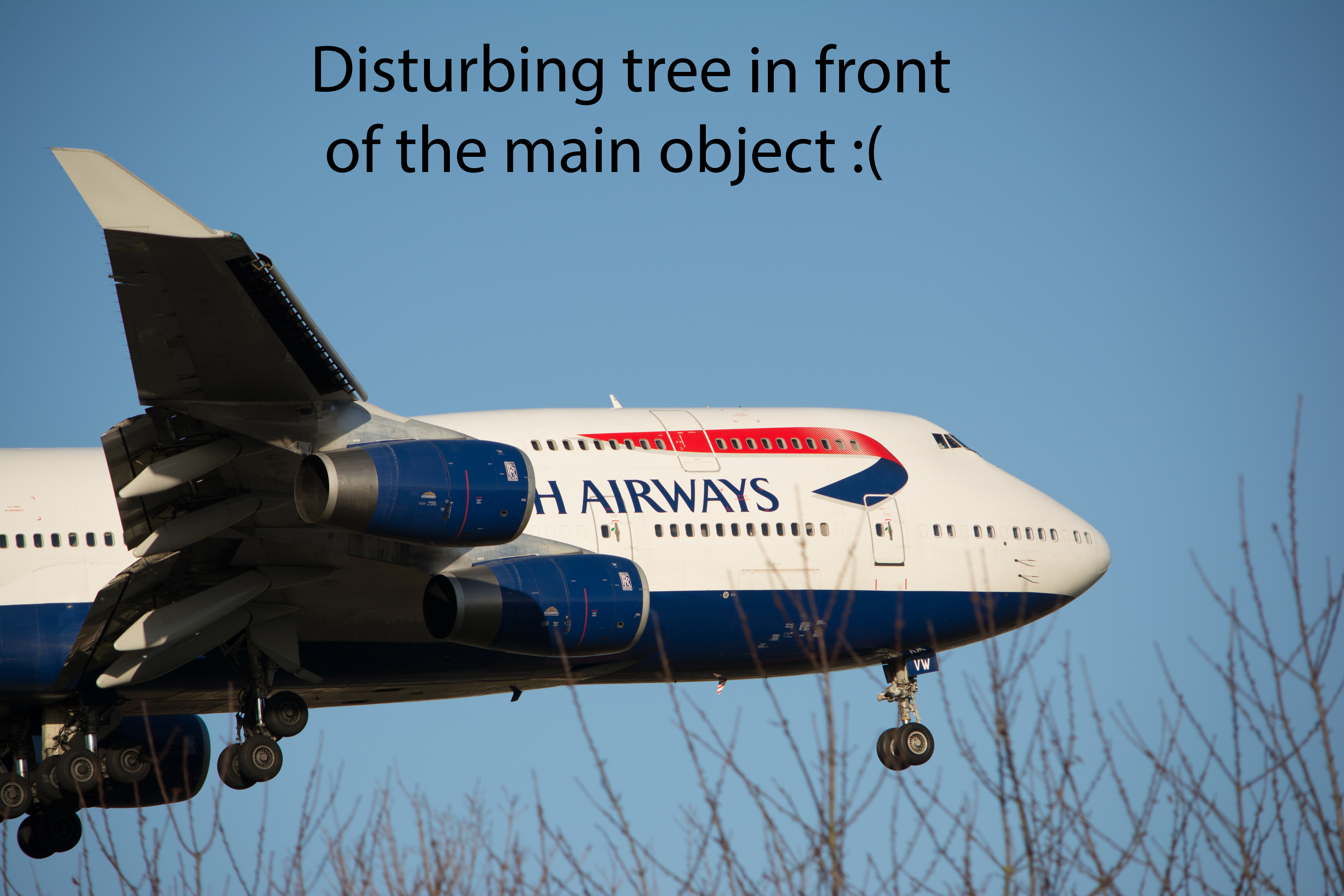 British Airways 747 - Disturbing tree in front of the main object :(